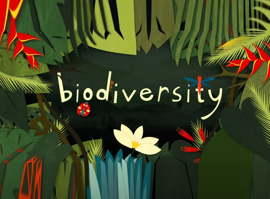 What is Biodiversity?